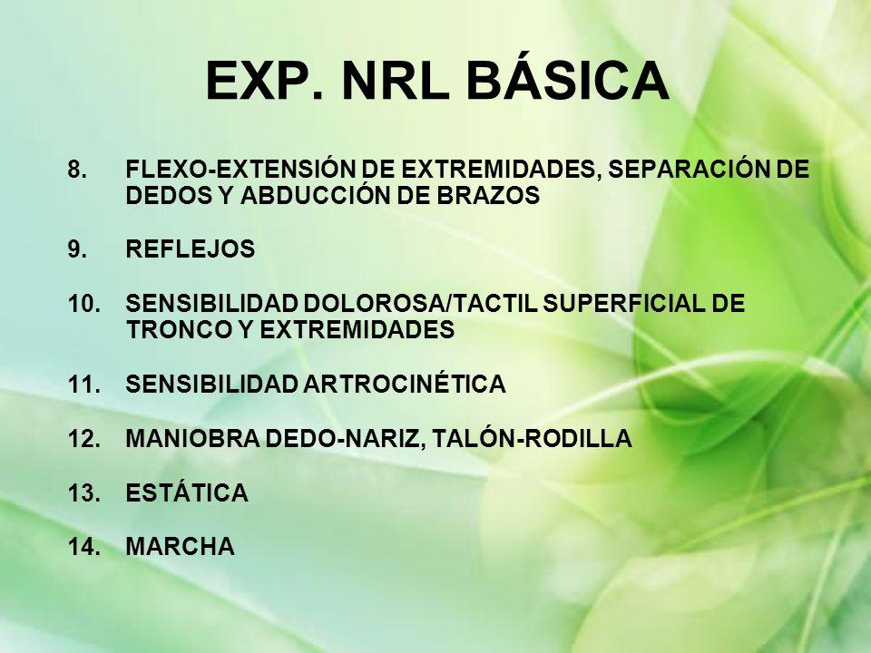 EXP. NRL BÁSICA 8. FLEXO-EXTENSIÓN DE EXTREMIDADES, SEPARACIÓN DE DEDOS Y ABDUCCIÓN DE BRAZOS. REFLEJOS.