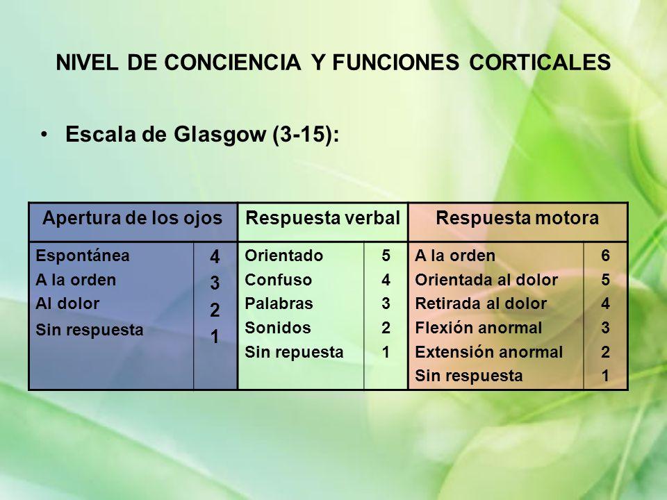 NIVEL DE CONCIENCIA Y FUNCIONES CORTICALES