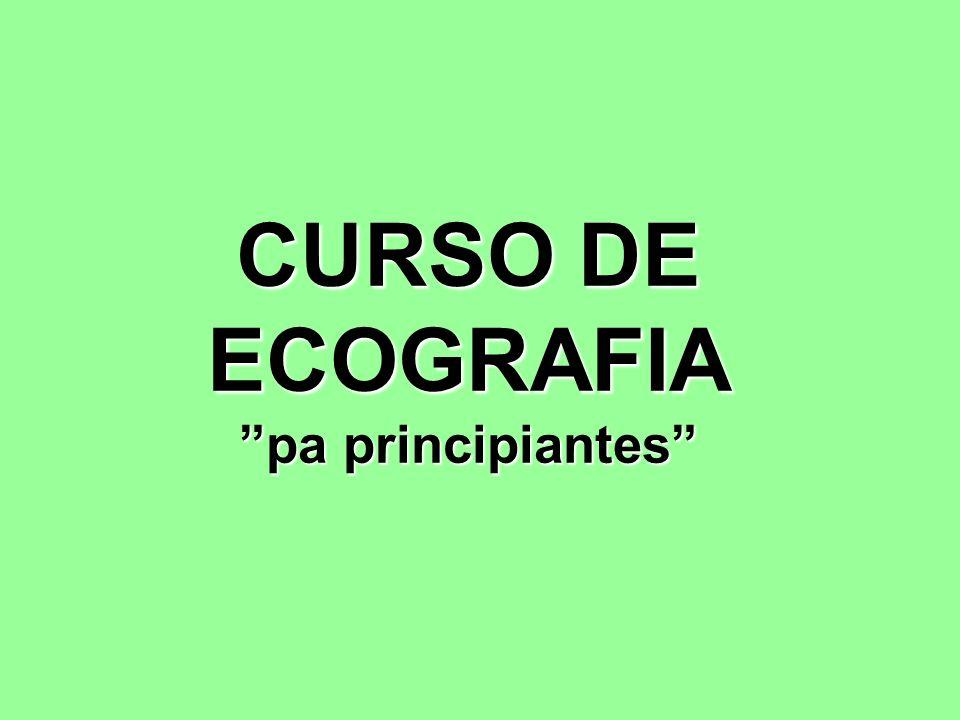 CURSO DE ECOGRAFIA pa principiantes