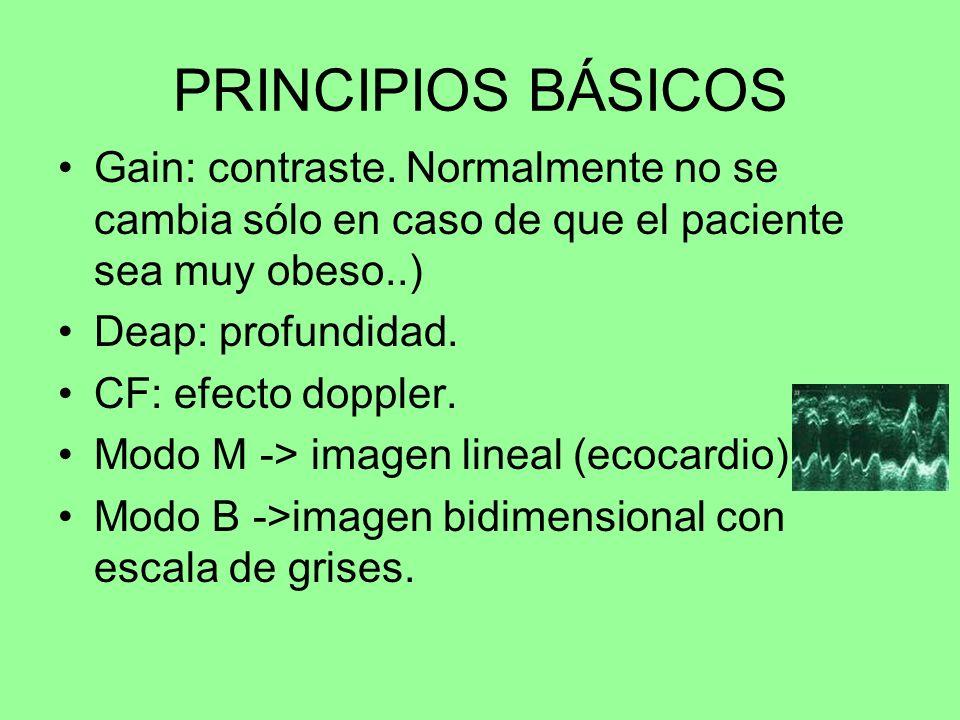 PRINCIPIOS BÁSICOS Gain: contraste. Normalmente no se cambia sólo en caso de que el paciente sea muy obeso..)