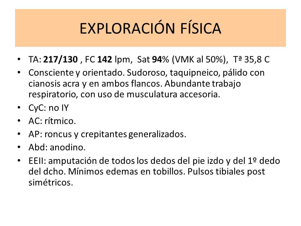 EXPLORACIÓN FÍSICA TA: 217/130 , FC 142 lpm, Sat 94% (VMK al 50%), Tª 35,8 C.
