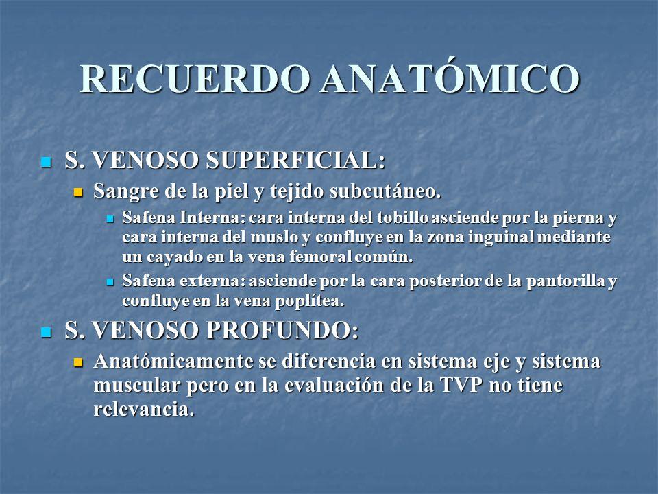 RECUERDO ANATÓMICO S. VENOSO SUPERFICIAL: S. VENOSO PROFUNDO: