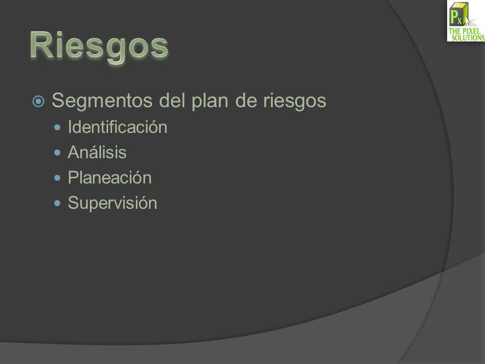 Riesgos Segmentos del plan de riesgos Identificación Análisis
