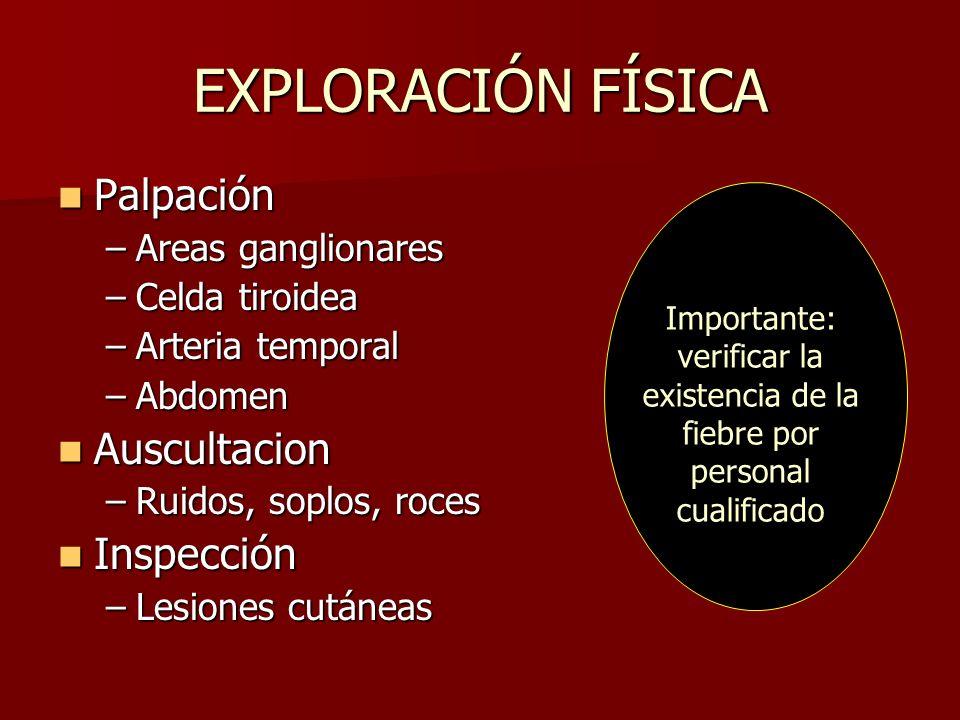 EXPLORACIÓN FÍSICA Palpación Auscultacion Inspección