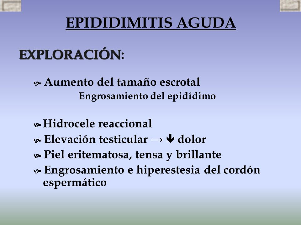 EPIDIDIMITIS AGUDA EXPLORACIÓN: Engrosamiento del epidídimo