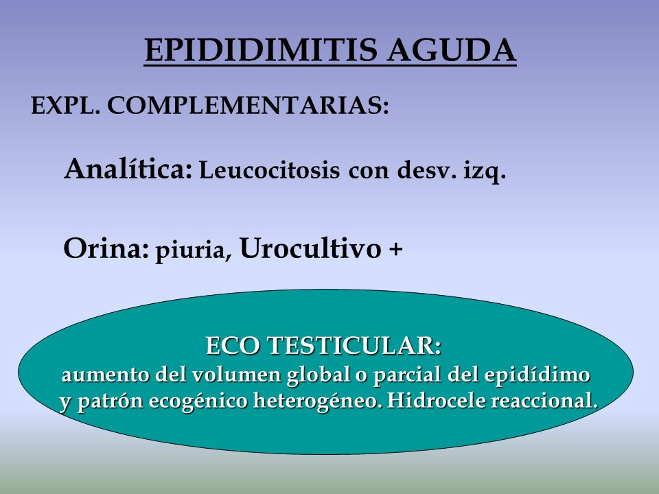 EPIDIDIMITIS AGUDA Analítica: Leucocitosis con desv. izq.