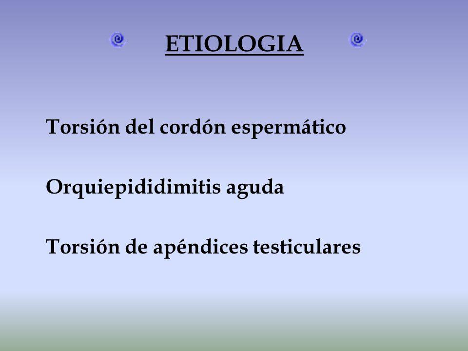 ETIOLOGIA Torsión del cordón espermático Orquiepididimitis aguda