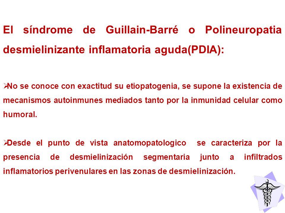 El síndrome de Guillain-Barré o Polineuropatia desmielinizante inflamatoria aguda(PDIA):