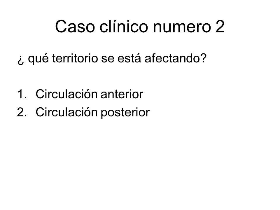 Caso clínico numero 2 ¿ qué territorio se está afectando