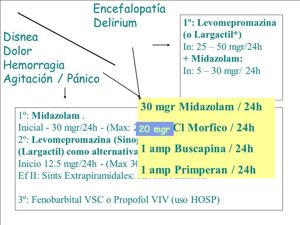 Encefalopatía Delirium. Disnea. Dolor. Hemorragia. Agitación / Pánico. SEDACION TERMINAL 3. 1º: Levomepromazina (o Largactil*)