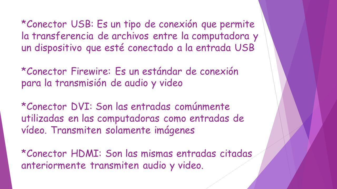 *Conector USB: Es un tipo de conexión que permite la transferencia de archivos entre la computadora y un dispositivo que esté conectado a la entrada USB *Conector Firewire: Es un estándar de conexión para la transmisión de audio y video *Conector DVI: Son las entradas comúnmente utilizadas en las computadoras como entradas de vídeo.