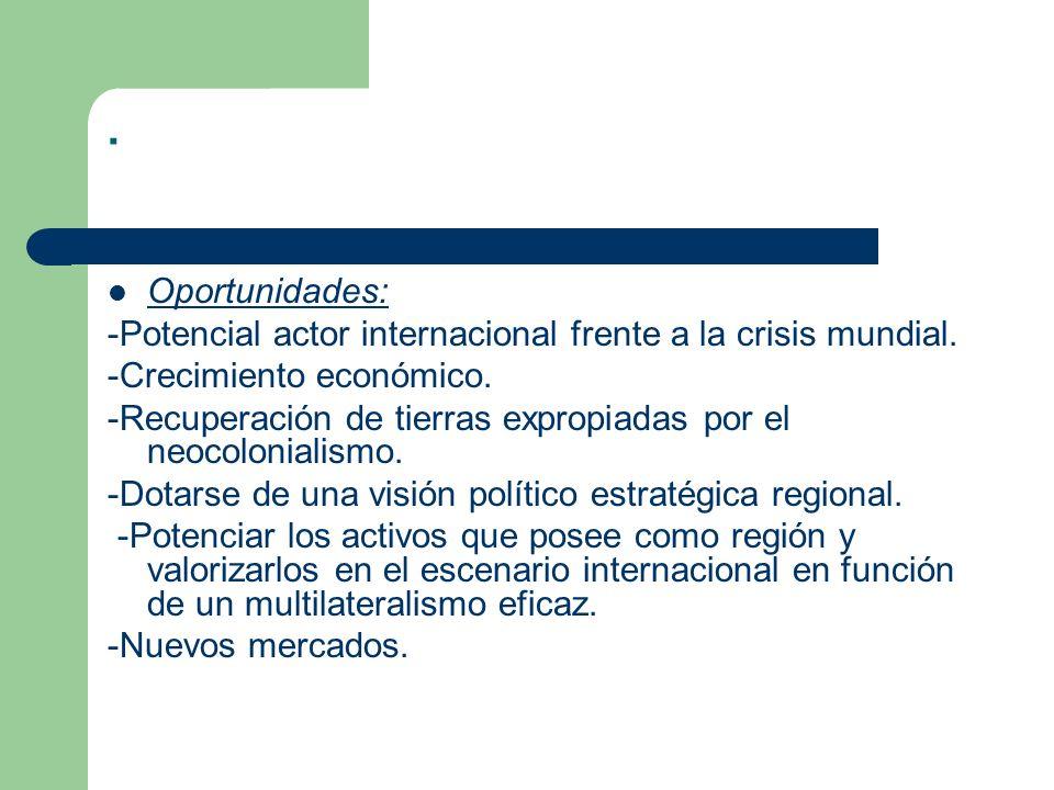. Oportunidades: -Potencial actor internacional frente a la crisis mundial. -Crecimiento económico.