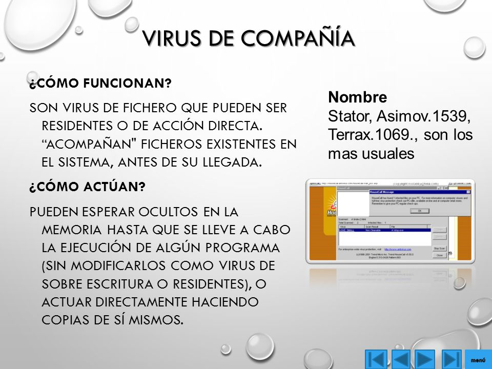 Virus de Compañía Nombre