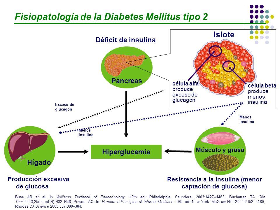 Resistencia a la insulina (menor captación de glucosa)