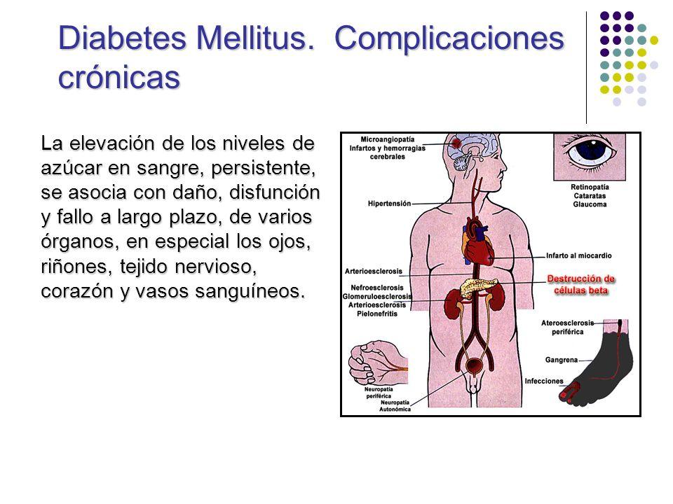 Diabetes Mellitus. Complicaciones crónicas