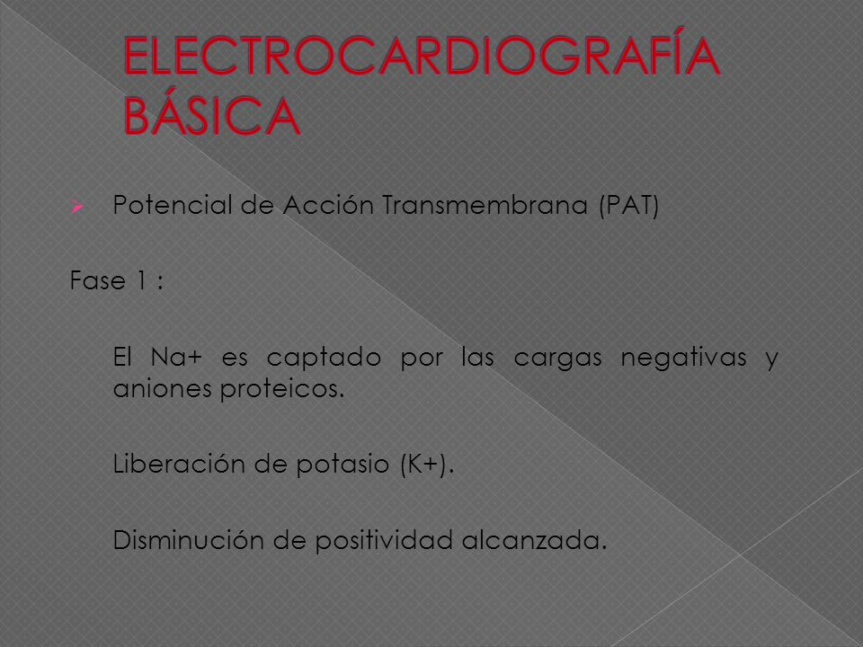 ELECTROCARDIOGRAFÍA BÁSICA