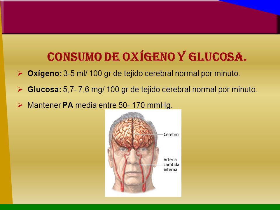 Consumo de Oxígeno y glucosa.