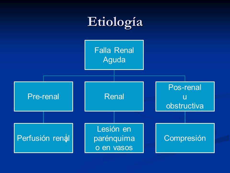 Etiología Falla Renal Aguda Pre-renal Perfusión renal Renal parénquima