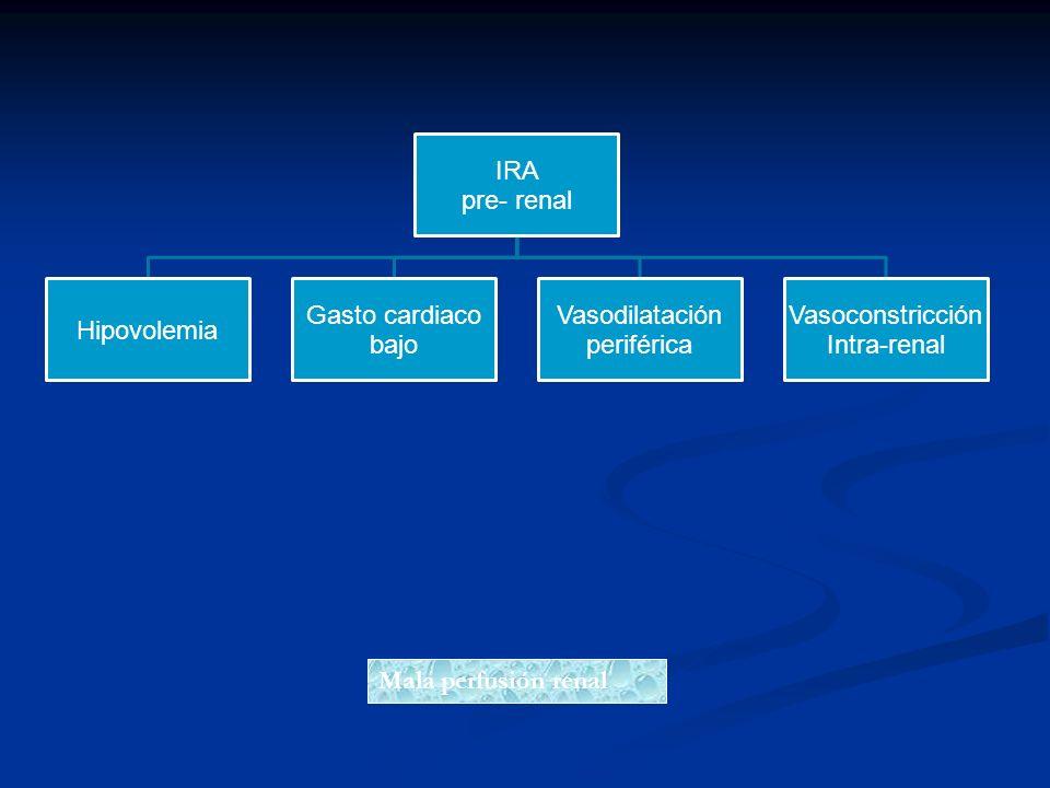 Mala perfusión renal pre- renal IRA Hipovolemia Gasto cardiaco bajo