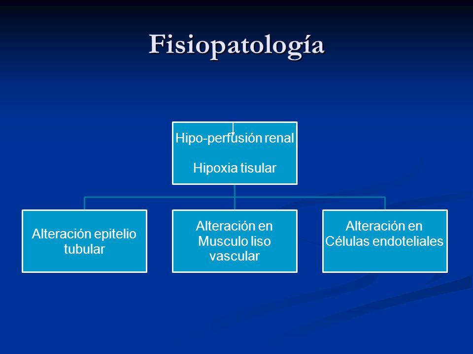 Fisiopatología Hipo-perfusión renal Hipoxia tisular