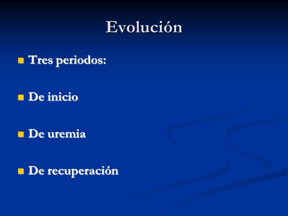 Evolución Tres periodos: De inicio De uremia De recuperación