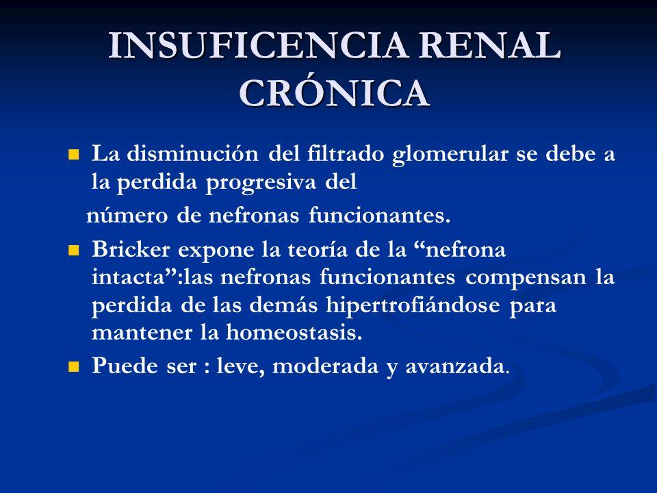 INSUFICENCIA RENAL CRÓNICA