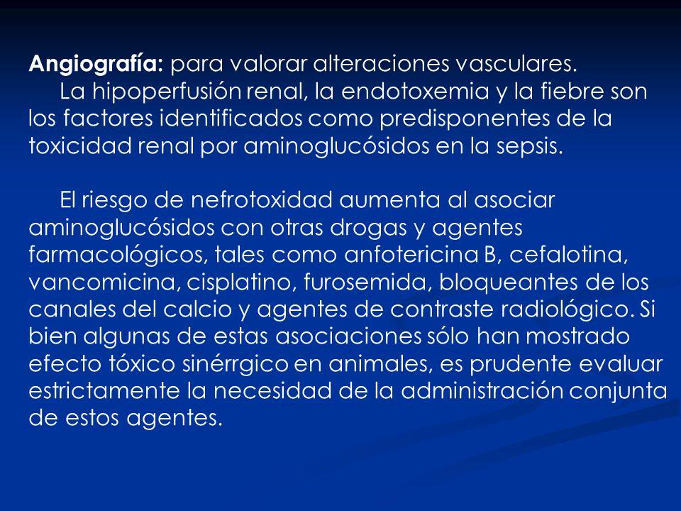 Angiografía: para valorar alteraciones vasculares.