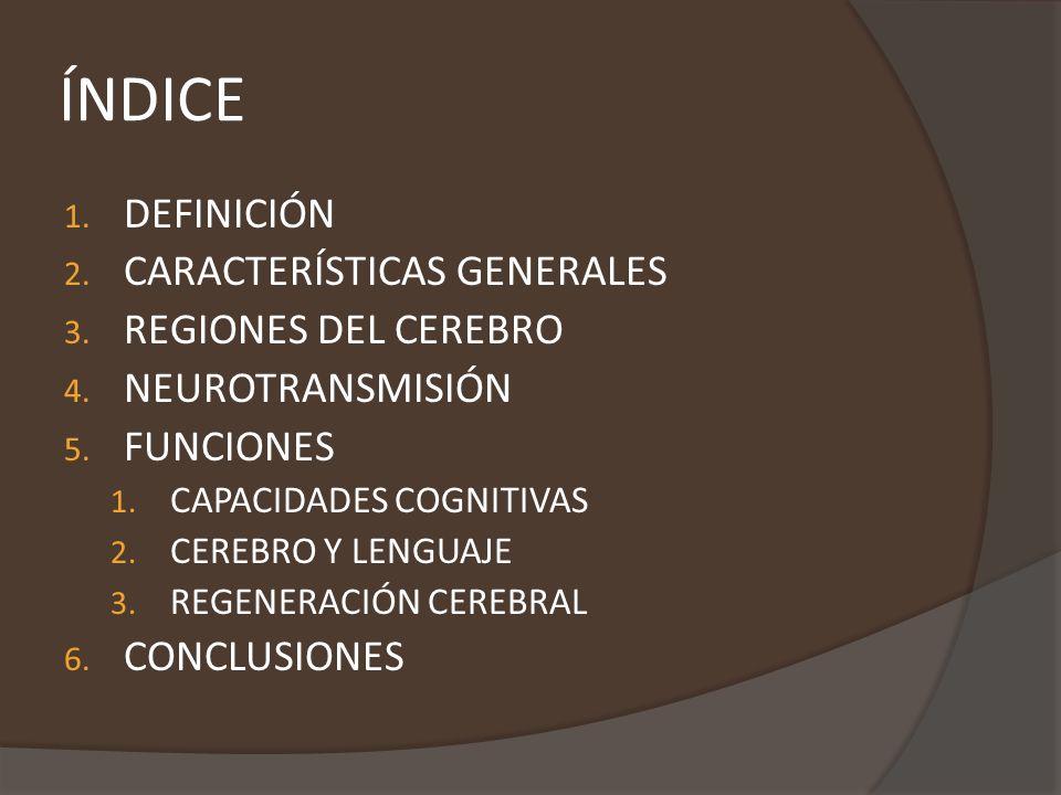 ÍNDICE DEFINICIÓN CARACTERÍSTICAS GENERALES REGIONES DEL CEREBRO
