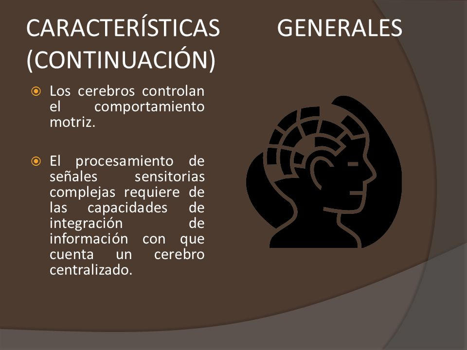 CARACTERÍSTICAS GENERALES (CONTINUACIÓN)