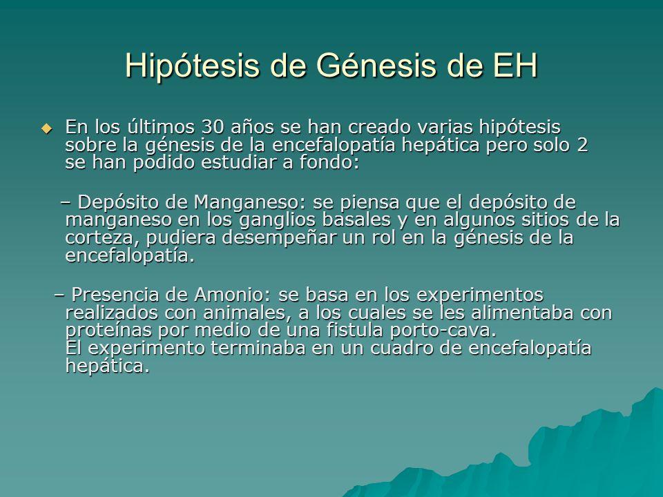 Hipótesis de Génesis de EH