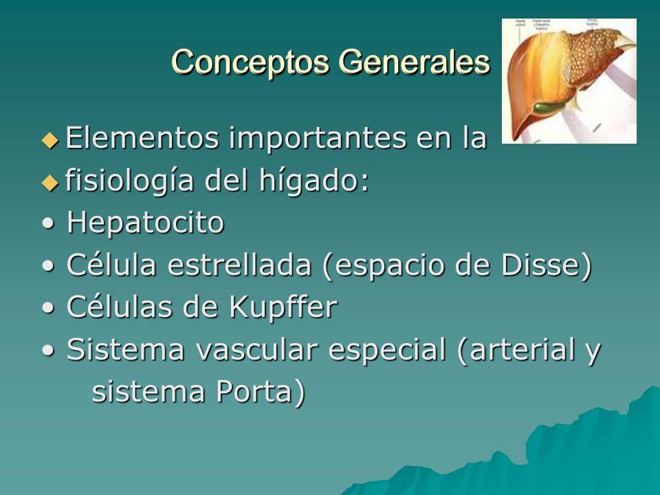 Conceptos Generales Conceptos Generales Elementos importantes en la