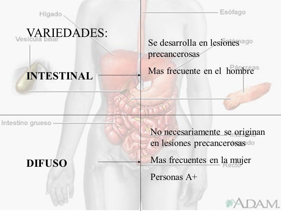 VARIEDADES: INTESTINAL DIFUSO Se desarrolla en lesiones precancerosas