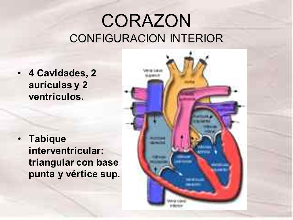 CORAZON CONFIGURACION INTERIOR