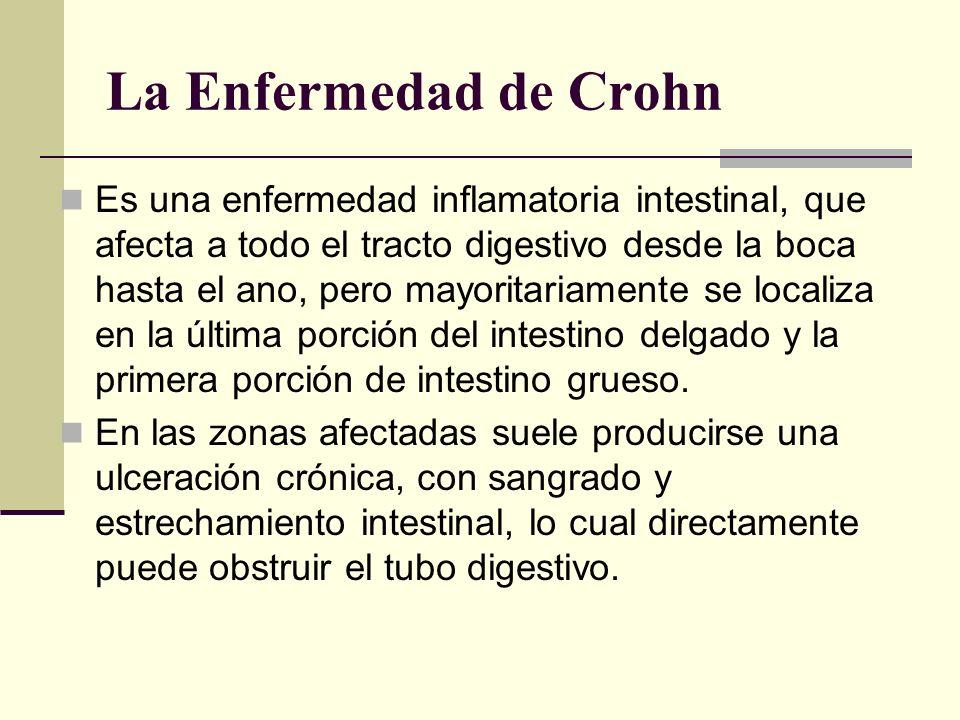 La Enfermedad de Crohn