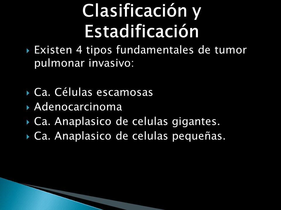 Clasificación y Estadificación