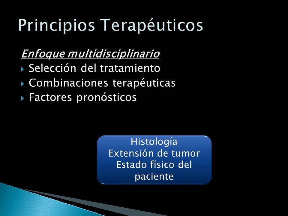 Principios Terapéuticos
