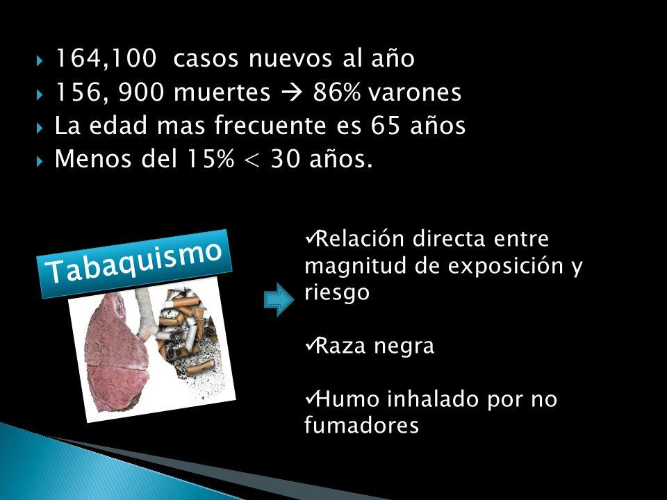 Tabaquismo 164,100 casos nuevos al año 156, 900 muertes  86% varones