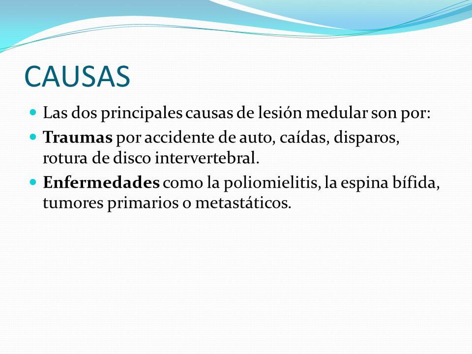 CAUSAS Las dos principales causas de lesión medular son por: