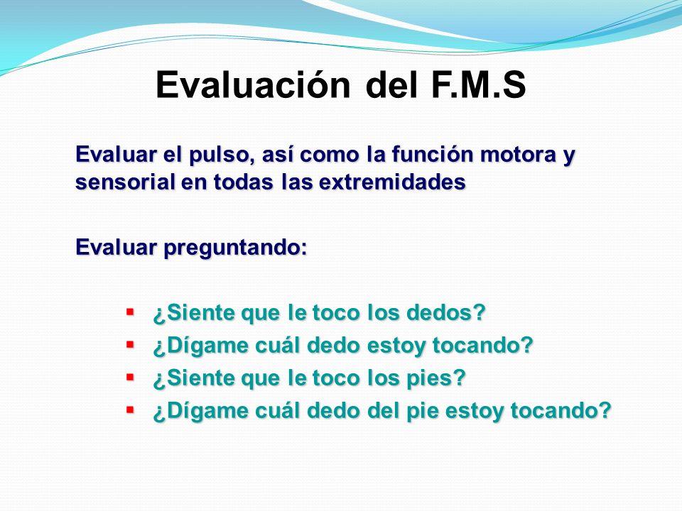 Evaluación del F.M.S Evaluar el pulso, así como la función motora y sensorial en todas las extremidades.