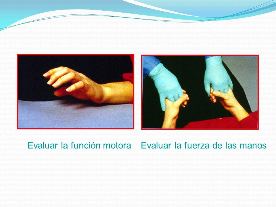Evaluar la función motora Evaluar la fuerza de las manos