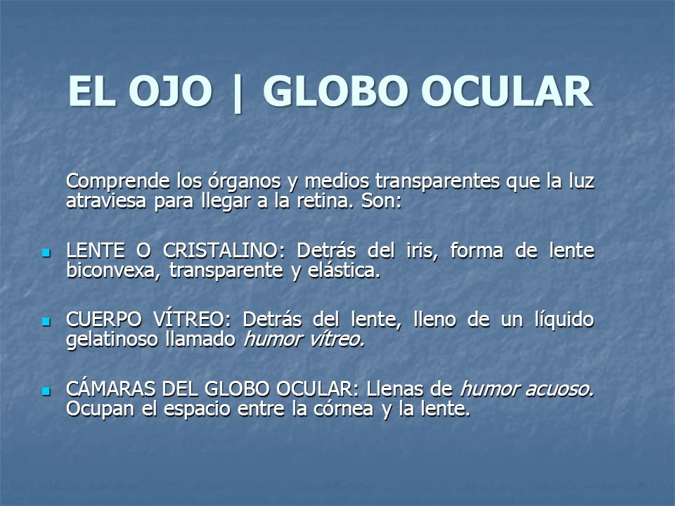 EL OJO | GLOBO OCULARComprende los órganos y medios transparentes que la luz atraviesa para llegar a la retina. Son: