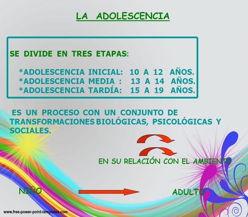 SE DIVIDE EN TRES ETAPAS: *ADOLESCENCIA INICIAL: 10 A 12 AÑOS.