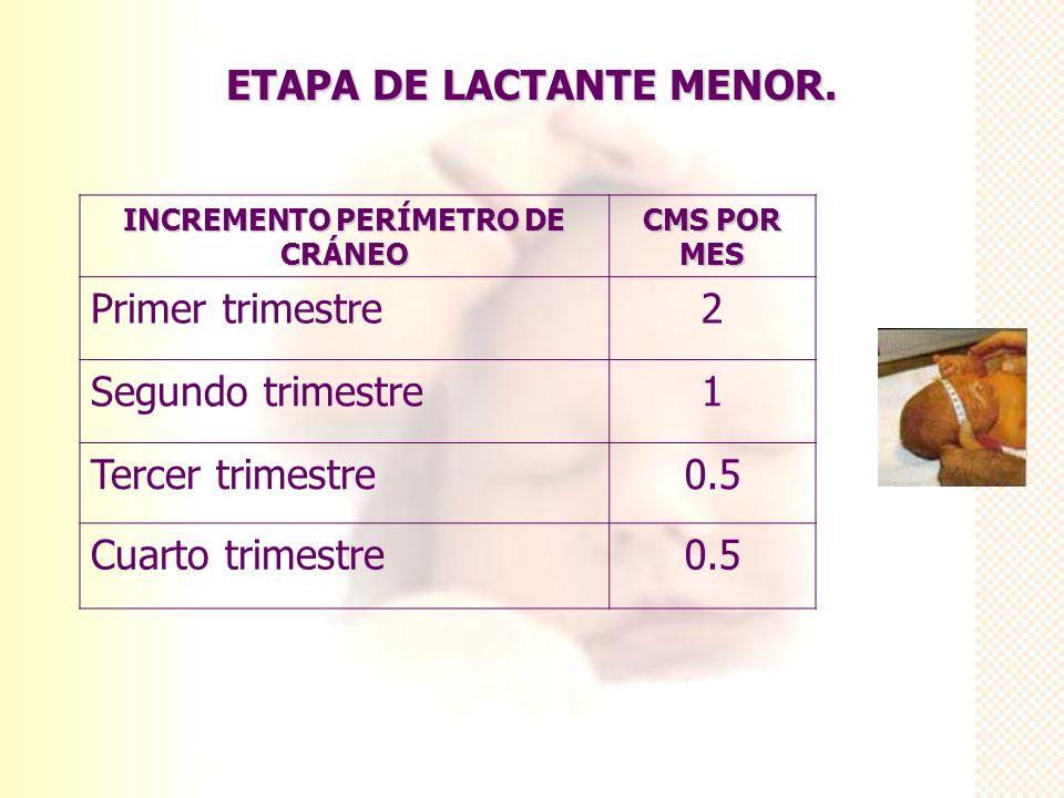 ETAPA DE LACTANTE MENOR. INCREMENTO PERÍMETRO DE CRÁNEO