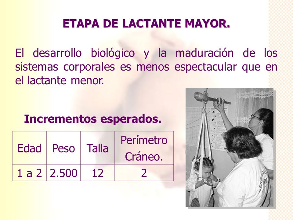 ETAPA DE LACTANTE MAYOR.
