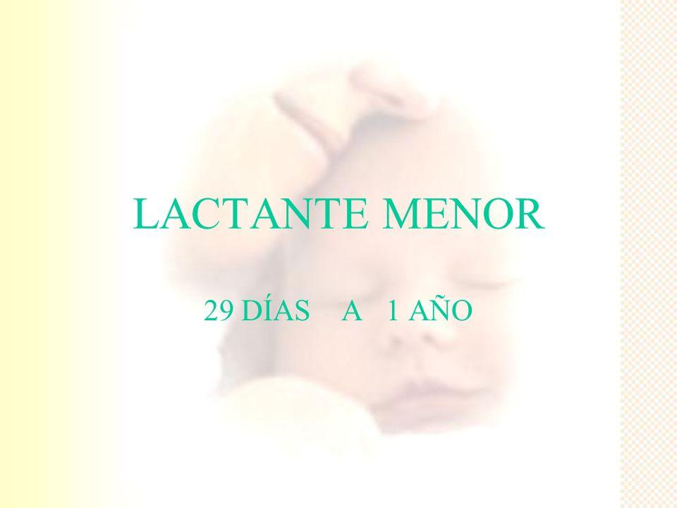 LACTANTE MENOR 29 DÍAS A 1 AÑO