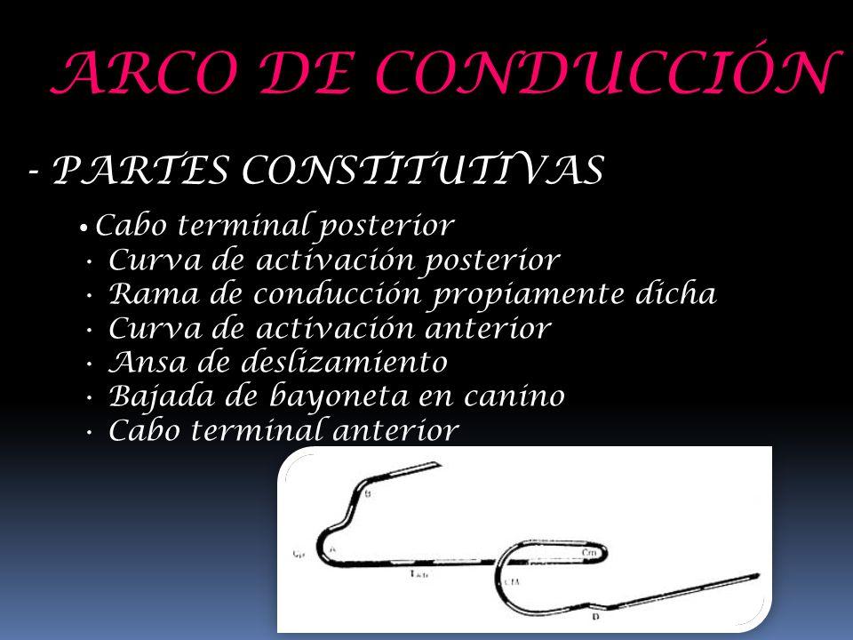 ARCO DE CONDUCCIÓN - PARTES CONSTITUTIVAS