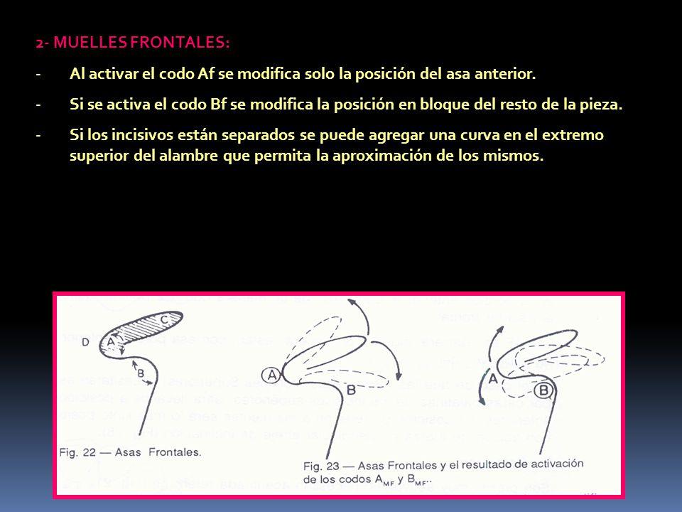 2- MUELLES FRONTALES: Al activar el codo Af se modifica solo la posición del asa anterior.