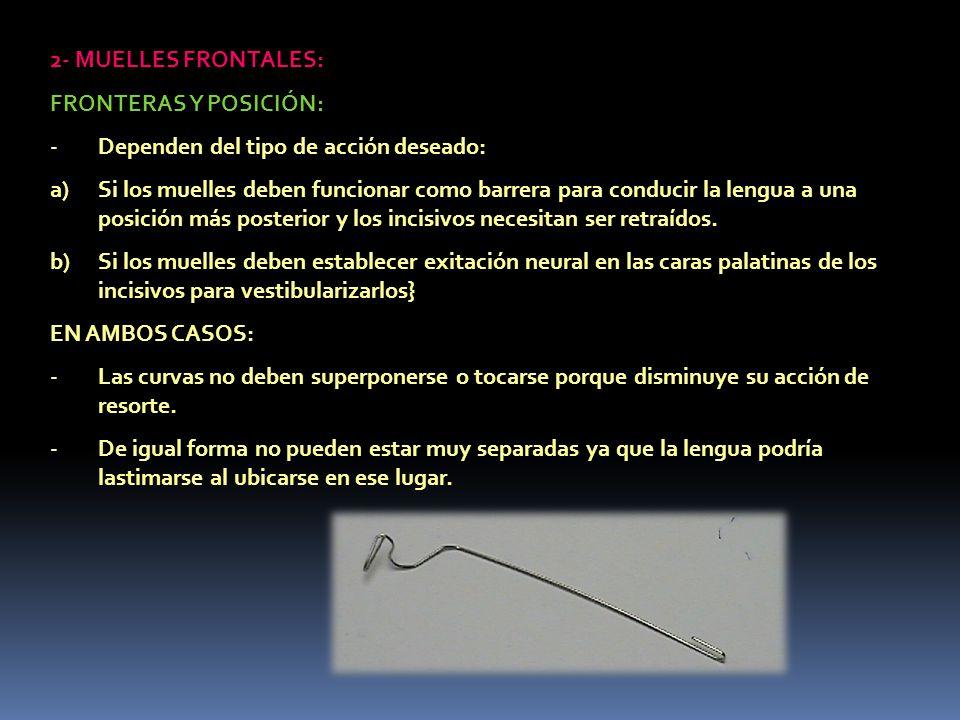 2- MUELLES FRONTALES: FRONTERAS Y POSICIÓN: Dependen del tipo de acción deseado: