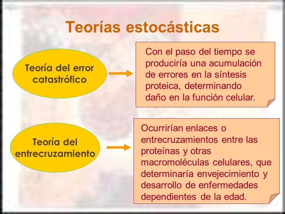 Teorías estocásticas