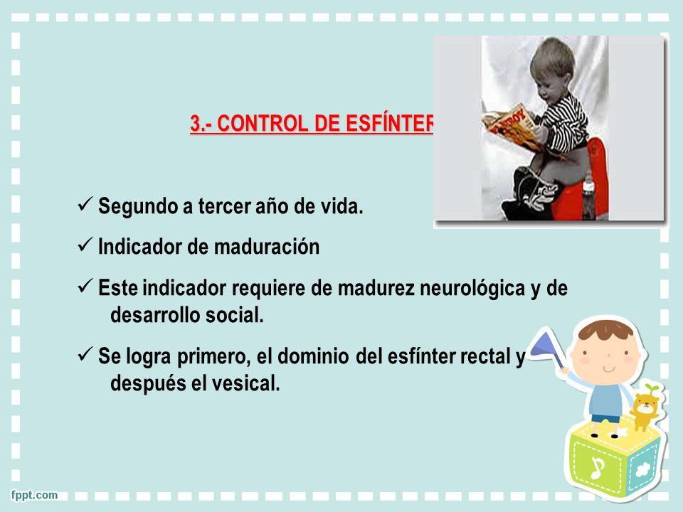 3.- CONTROL DE ESFÍNTER. Segundo a tercer año de vida. Indicador de maduración.